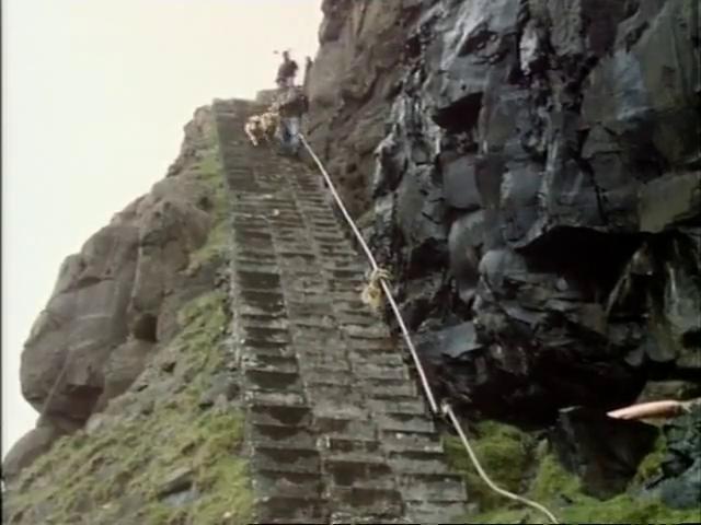 A man herding sheep down very steep stone steps.