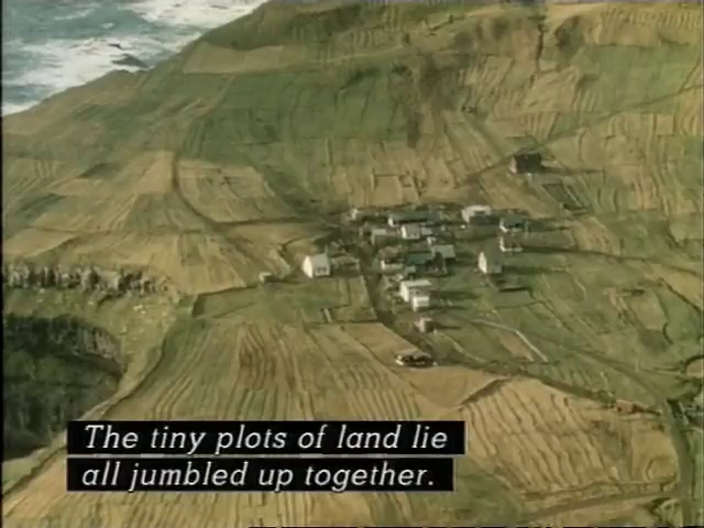 An arial view of the village with the captain: The tiny plots of land lie all jumbled up together.